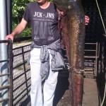 Сом од 2,15 метра уловљен у Грачаничком језеру