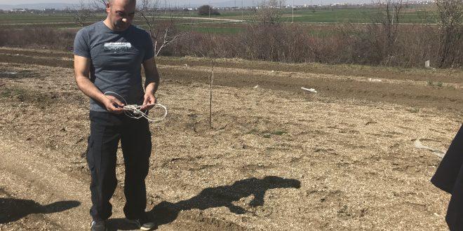 Грачаница: Милораду Велићу покрадено 300 садница шљива