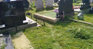 Комуналац наставља акцију уређења гробља